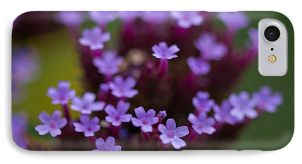 tiny blossoms II IPhone Case by Andreas Levi
