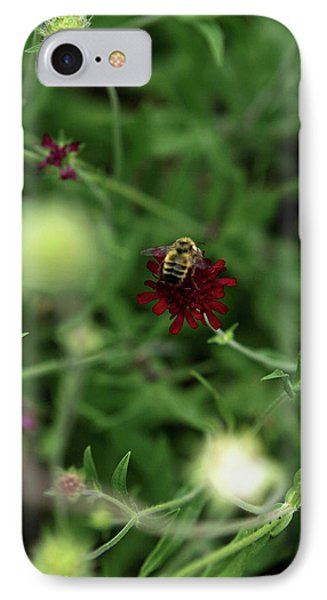 IPhone Case featuring the photograph To Bee by Lorraine Devon Wilke