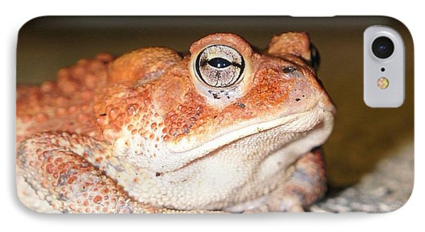 Toad You So IPhone Case