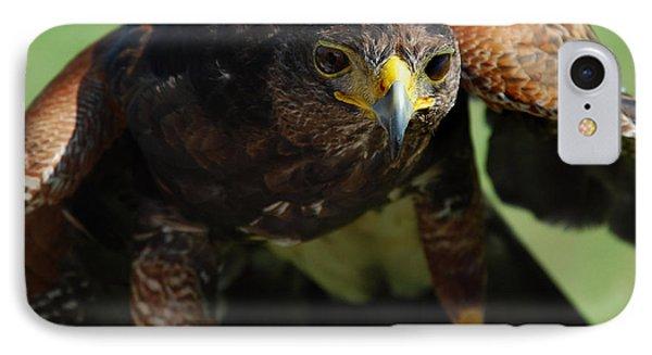 Top Raptor Phone Case by Skip Willits