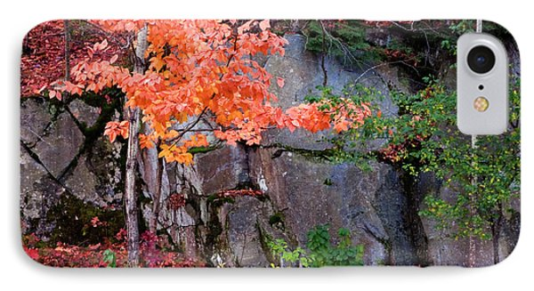 Tree And Rock IPhone Case