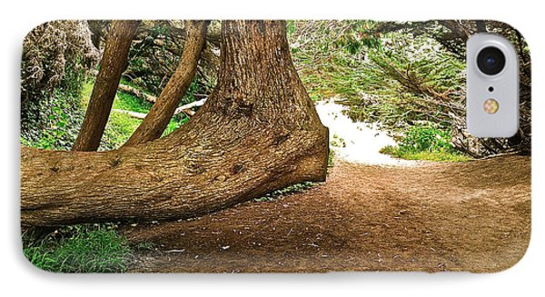 IPhone Case featuring the photograph Tree And Trail by Bill Owen