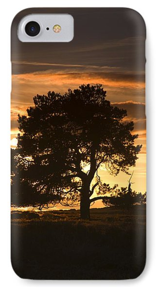 Tree At Sunset, North Yorkshire, England Phone Case by John Short
