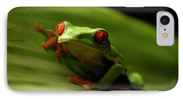 Tree Frog 10 Phone Case by Bob Christopher