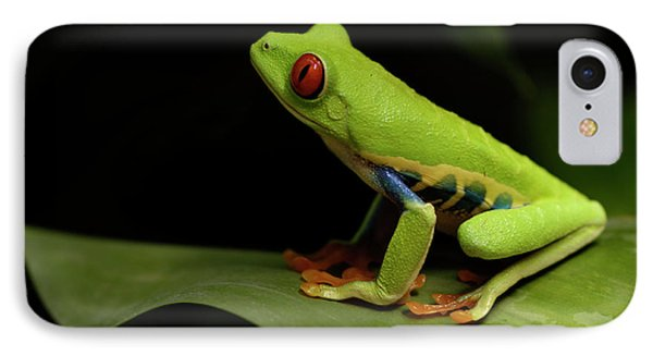 Tree Frog 14 Phone Case by Bob Christopher