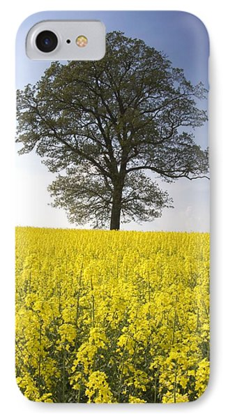 Tree In A Rapeseed Field, Yorkshire Phone Case by John Short