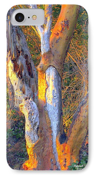 Tree In The Sunset Phone Case by Randall Thomas Stone