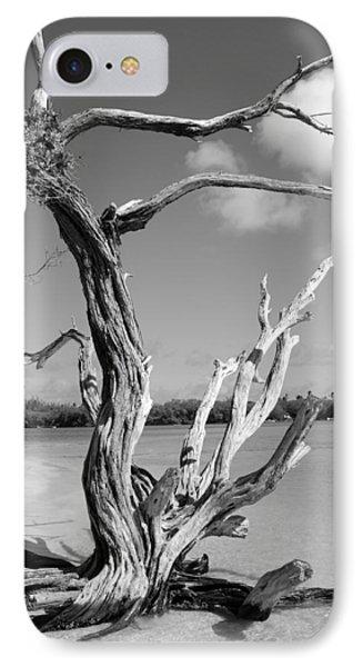 Tree In Tobago Phone Case by Julie VanDore