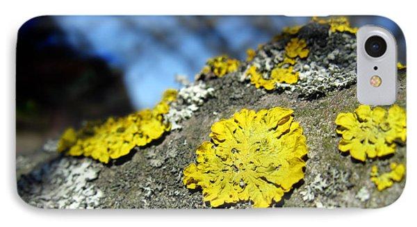 IPhone Case featuring the photograph Tree Lichen by Ausra Huntington nee Paulauskaite