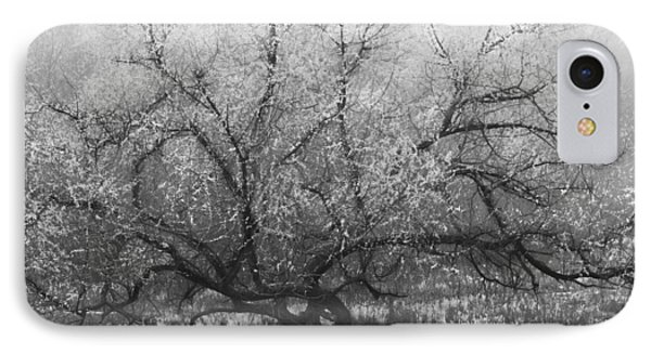 Tree Of Enchantment Phone Case by Debra and Dave Vanderlaan