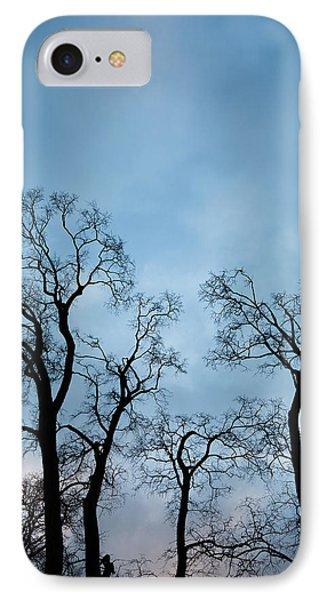 Trees. Autumn. Phone Case by Konstantin Dikovsky