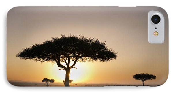 Trees On The Savannah With The Sun Phone Case by David DuChemin