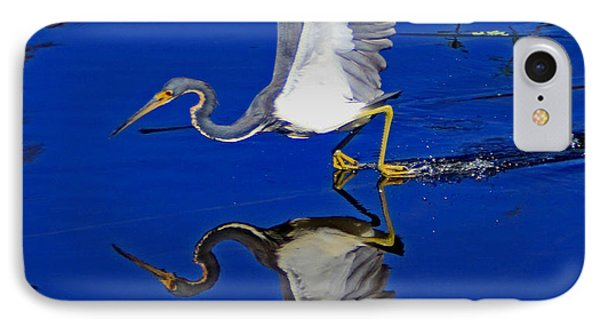 Tri-color Heron Water Ski IPhone Case by Larry Nieland