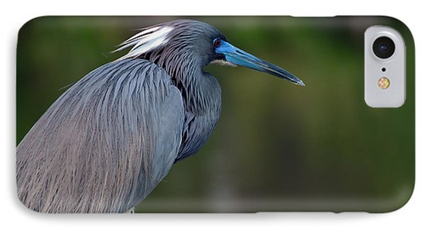IPhone Case featuring the photograph Tricolored Heron by Art Whitton
