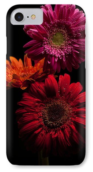 Trio Phone Case by Ron Smith