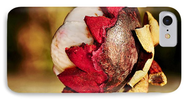 Tropical Mangosteen - Ready To Eat Phone Case by Kaye Menner