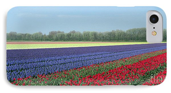 Tulip And Hyacinth Fields In Holland. Panorama Phone Case by Ausra Huntington nee Paulauskaite