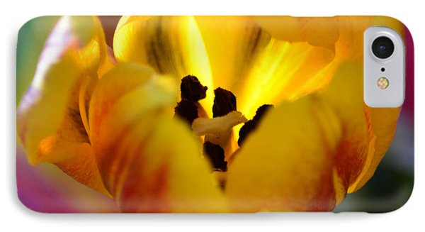Tulip Light Phone Case by Sandi OReilly