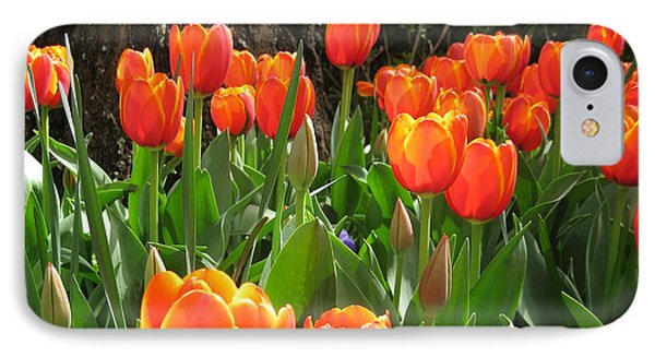 Tulip Time Phone Case by Margaret Hodgson