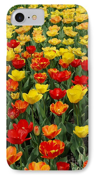 IPhone Case featuring the photograph Tulips by Eva Kaufman