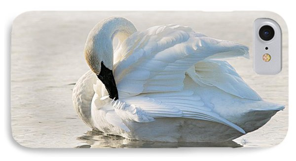 Tumpeter Swan Phone Case by Larry Ricker