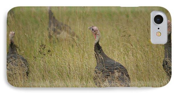 Turkeys Phone Case by Michael Peychich