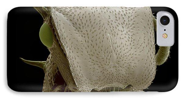 Turtle Ant's Head, Sem Phone Case by Steve Gschmeissner