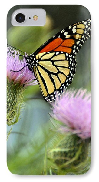 Twin Thistle Butterfly Phone Case by Marty Koch
