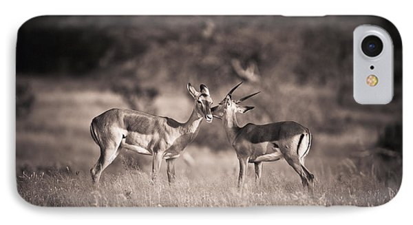 Two Antelopes Together In A Field Phone Case by David DuChemin