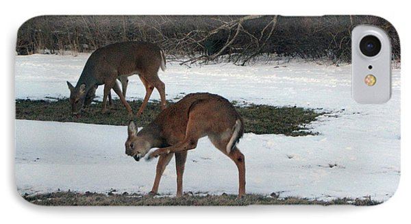 Two Deer Grazing IPhone Case by Cedric Hampton