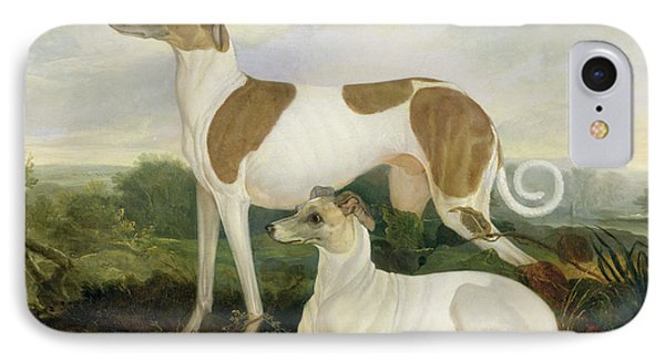 Two Greyhounds In A Landscape Phone Case by Charles Hancock