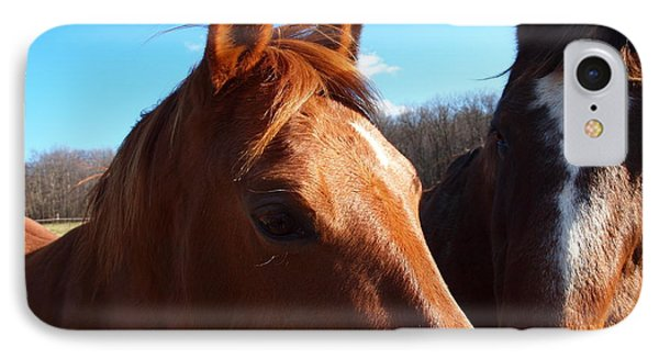 Two Horses In Love Phone Case by Robert Margetts