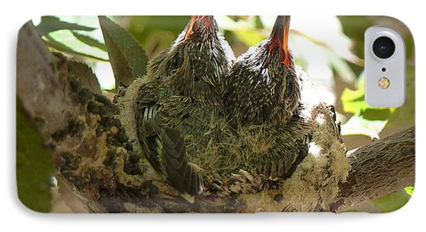 Two Hummingbird Babies In A Nest 3 Phone Case by Xueling Zou