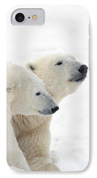 Two Polar Bears Ursus Maritimus Showing Phone Case by Richard Wear