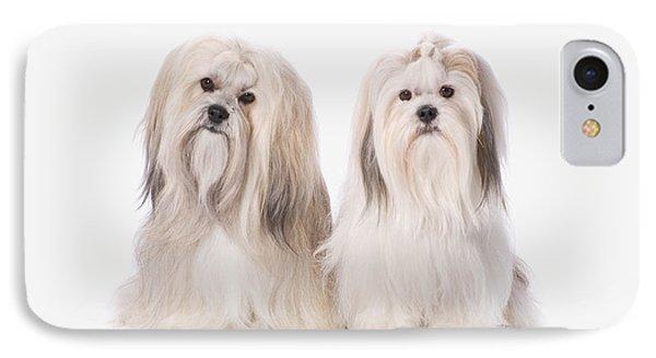 Two White Lhasa Apso Puppies St. Albert Phone Case by Corey Hochachka