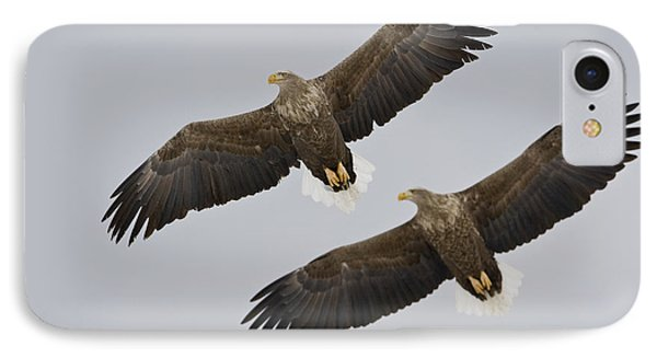 Two White-tailed Eagles In Flight Side Phone Case by Roy Toft