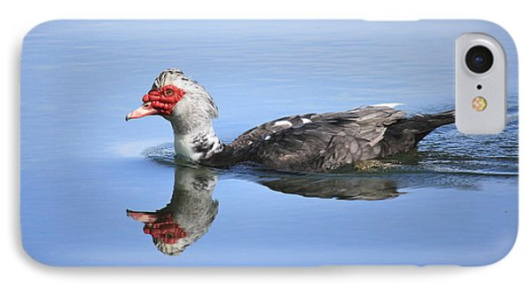 IPhone Case featuring the photograph Ugly Duckling by Penny Meyers