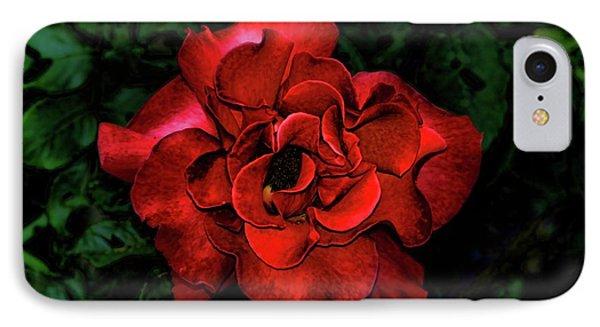 Valentine Rose Phone Case by Mariola Bitner