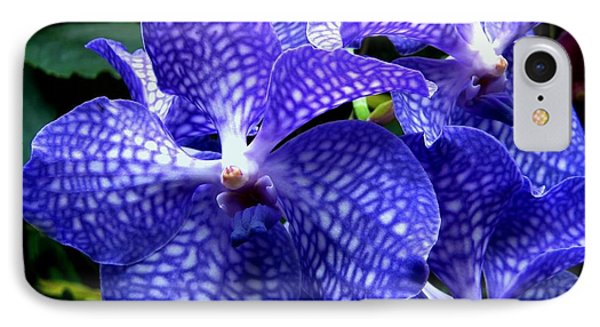 Vanda Orchids Phone Case by Shirley Sirois