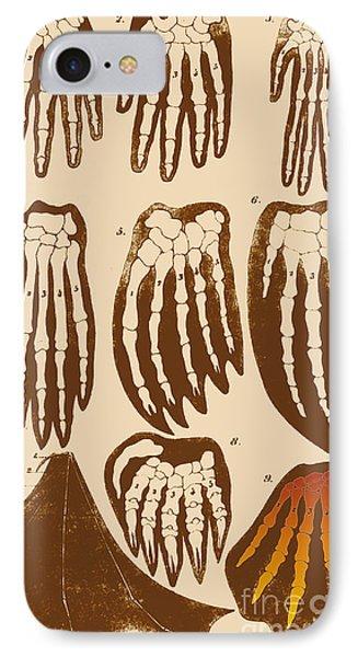Vertebrate Mammal Forefeet, Ernst IPhone Case
