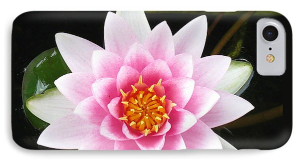 Vertical Water Lily Phone Case by Debbie Finley