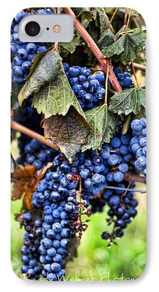 Vines And Clusters Phone Case by Randy Wehner Photography