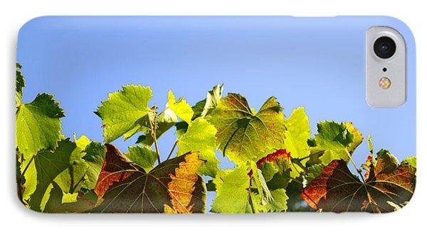 Vineyard Leaves Phone Case by Carlos Caetano