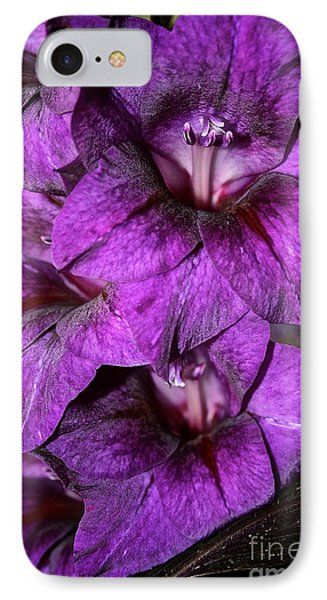 Violet Glads Phone Case by Susan Herber