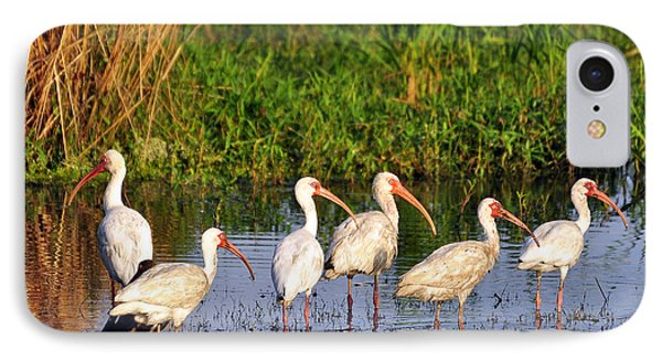 Wading Ibises Phone Case by Al Powell Photography USA