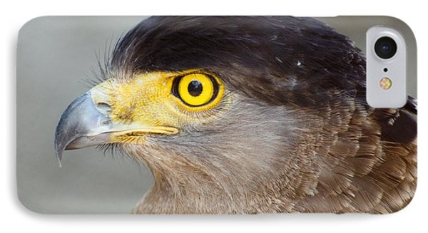 IPhone Case featuring the photograph Waiting For Prey  by Fotosas Photography