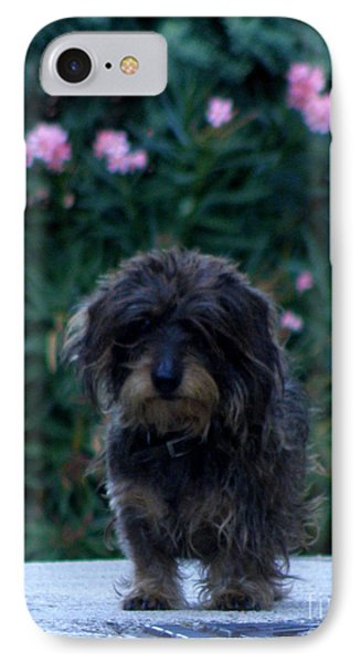 Waiting IPhone Case by Lainie Wrightson