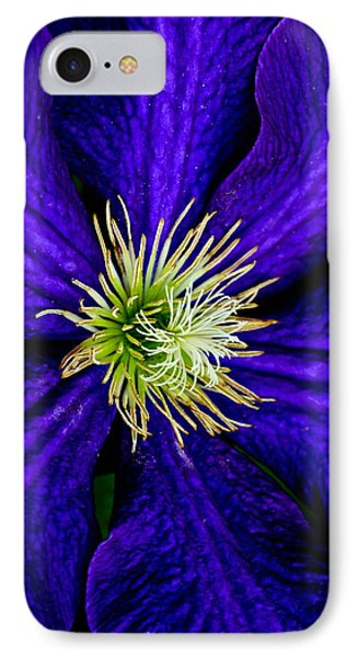 Wall Flower Phone Case by Frozen in Time Fine Art Photography