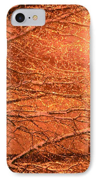 Warm Icy Reflections Phone Case by Sandi OReilly