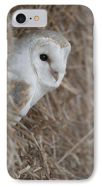 Watchfull Barn Owl IPhone Case